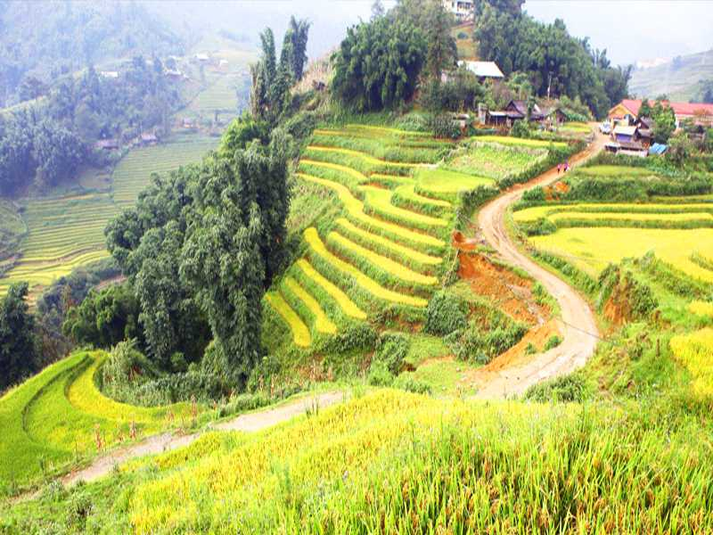Sapa Tour - 1 Day - Visit Villages: Cat Cat - Sin Chai