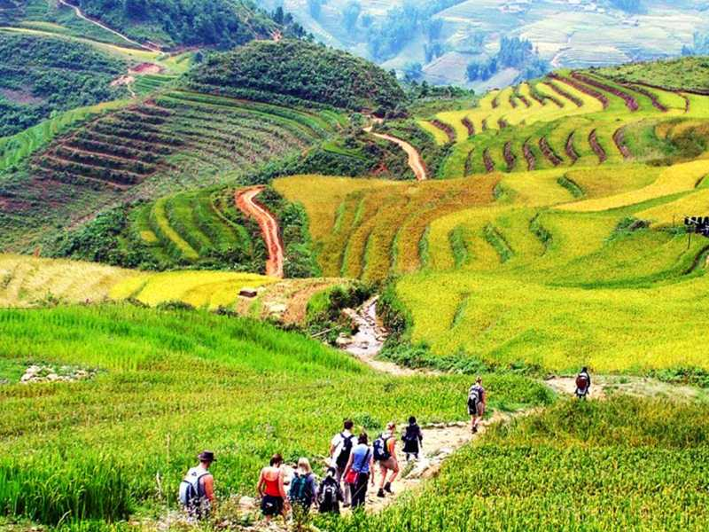 Sapa Tour - 1 Day - Visit Villages: Ma Tra - Ta Phin